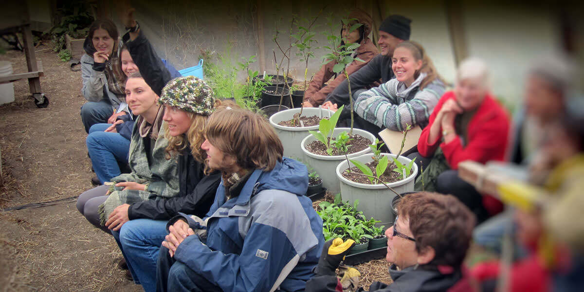 Verge Permaculture Design Course