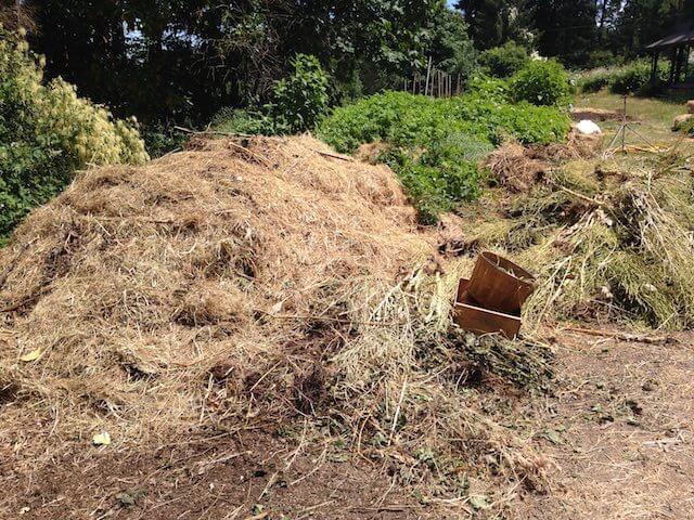Composting 101-Basic composting skills workshop