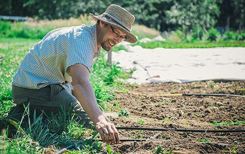 Build Your Soil Workshop Series