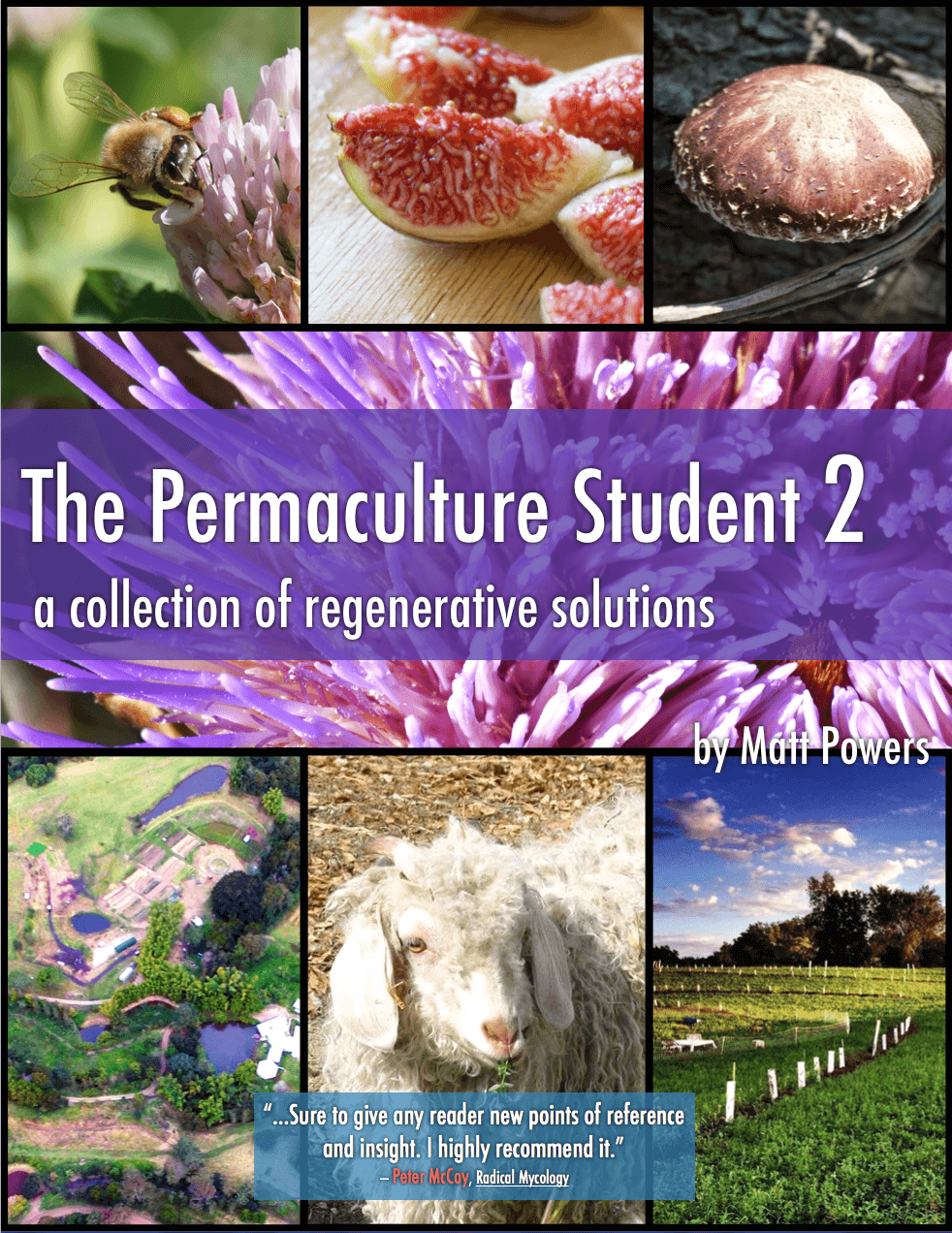Easy to Understand Permaculture – A Book of Solutions