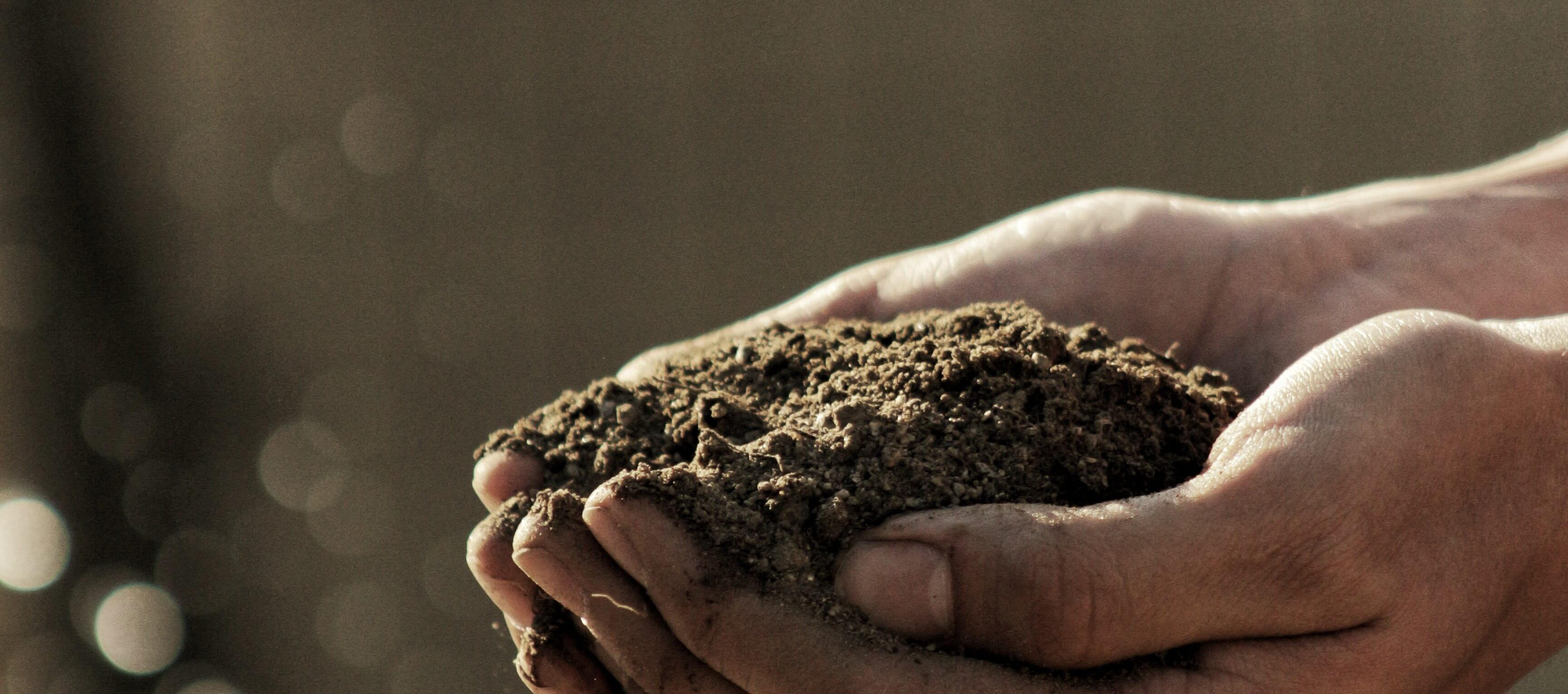 Super Soil: The Art and Science of Making Compost ONLINE